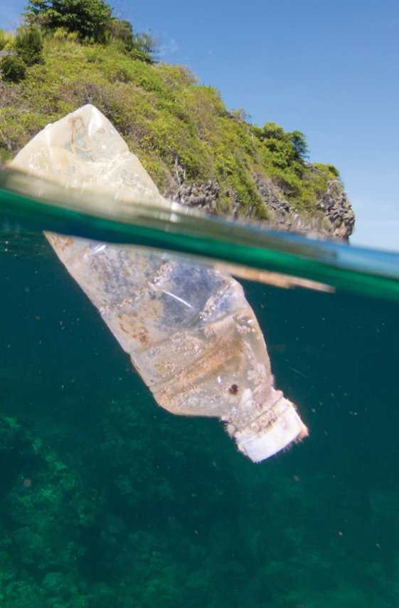 Oceana's Plastic Pollution Series